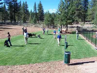 South Lake Tahoe Bijou Dog Park - Pet Friendly