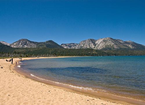 Dog Friendly Lake Tahoe